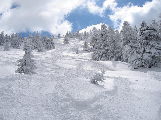 Ski-Japan