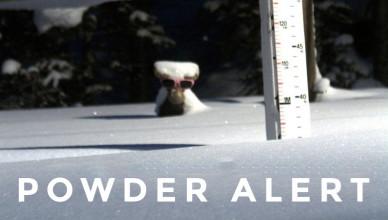 powder-alert